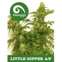 Auto Little Dipper