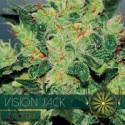 Auto Vision Jack