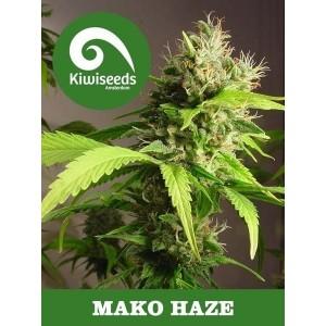 Mako Haze