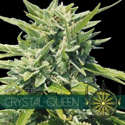 Семена конопли Crystal Queen