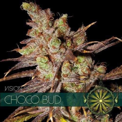 Семена конопли Choco Bud