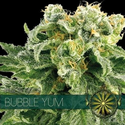 Семена конопли Bubble Yum