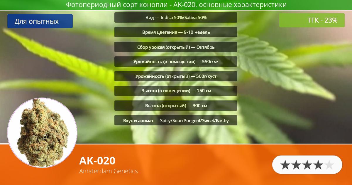 Инфограмма сорта марихуаны AK-020