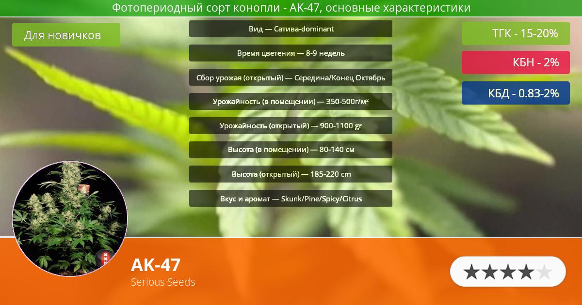 Инфограмма сорта марихуаны AK-47