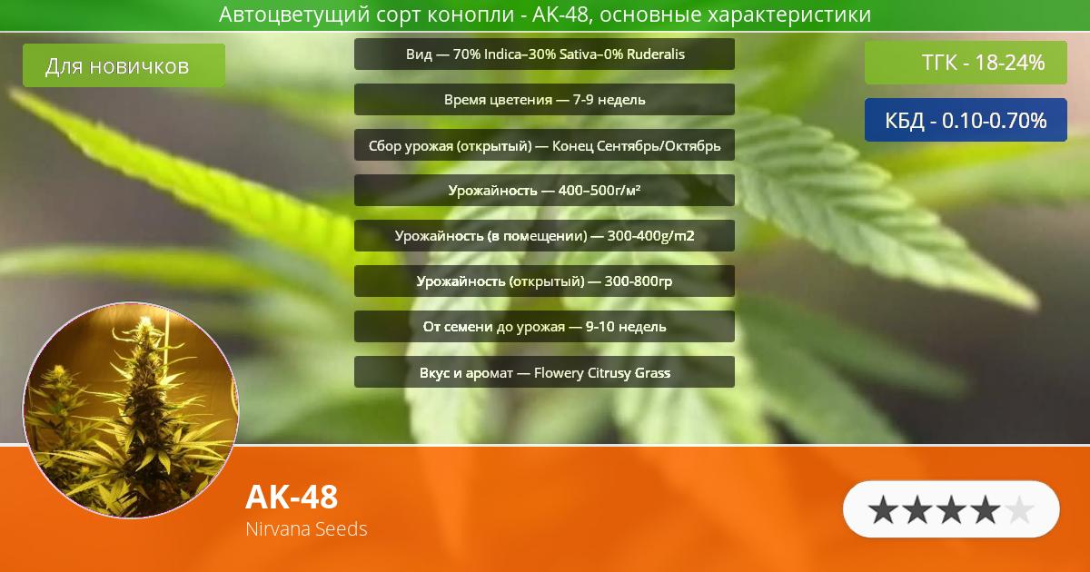 Инфограмма сорта марихуаны AK-48