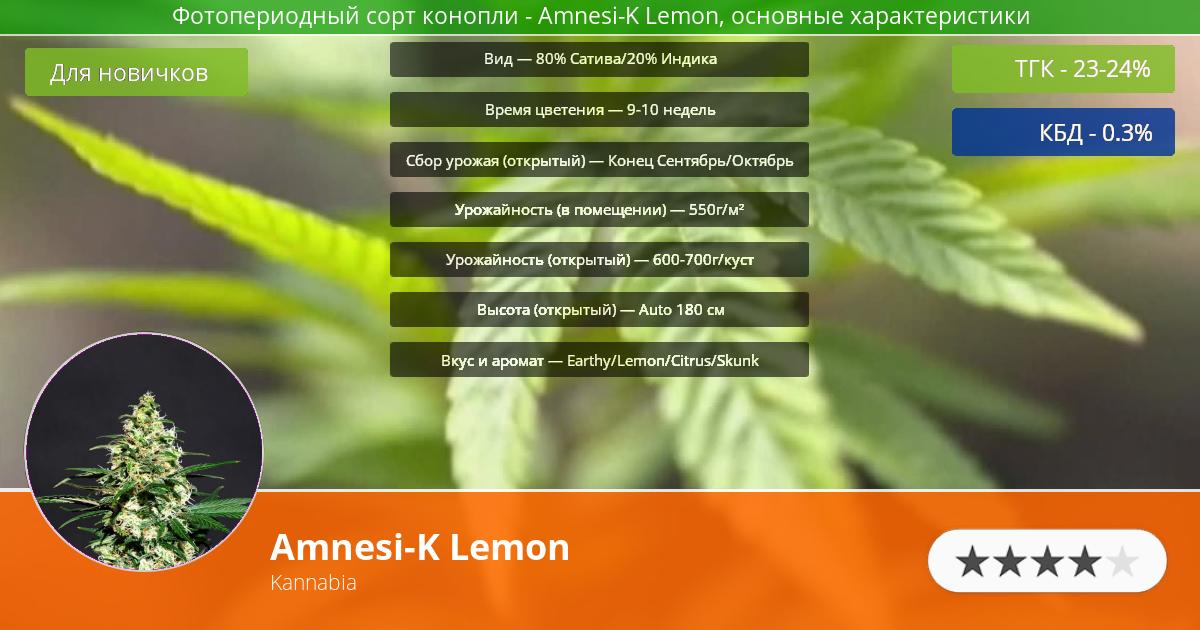 Инфограмма сорта марихуаны Amnesi-K Lemon