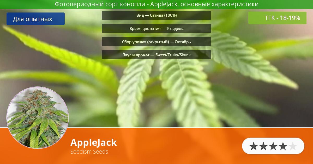 Инфограмма сорта марихуаны AppleJack