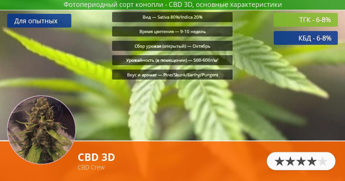 Инфограмма сорта марихуаны CBD 3D