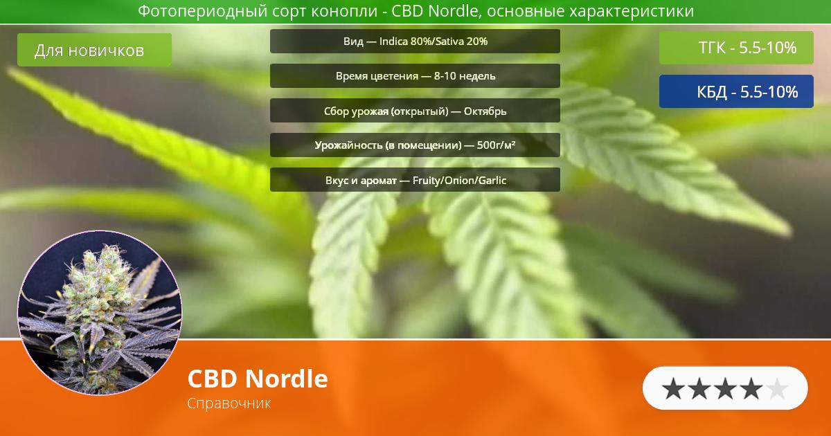 Инфограмма сорта марихуаны CBD Nordle