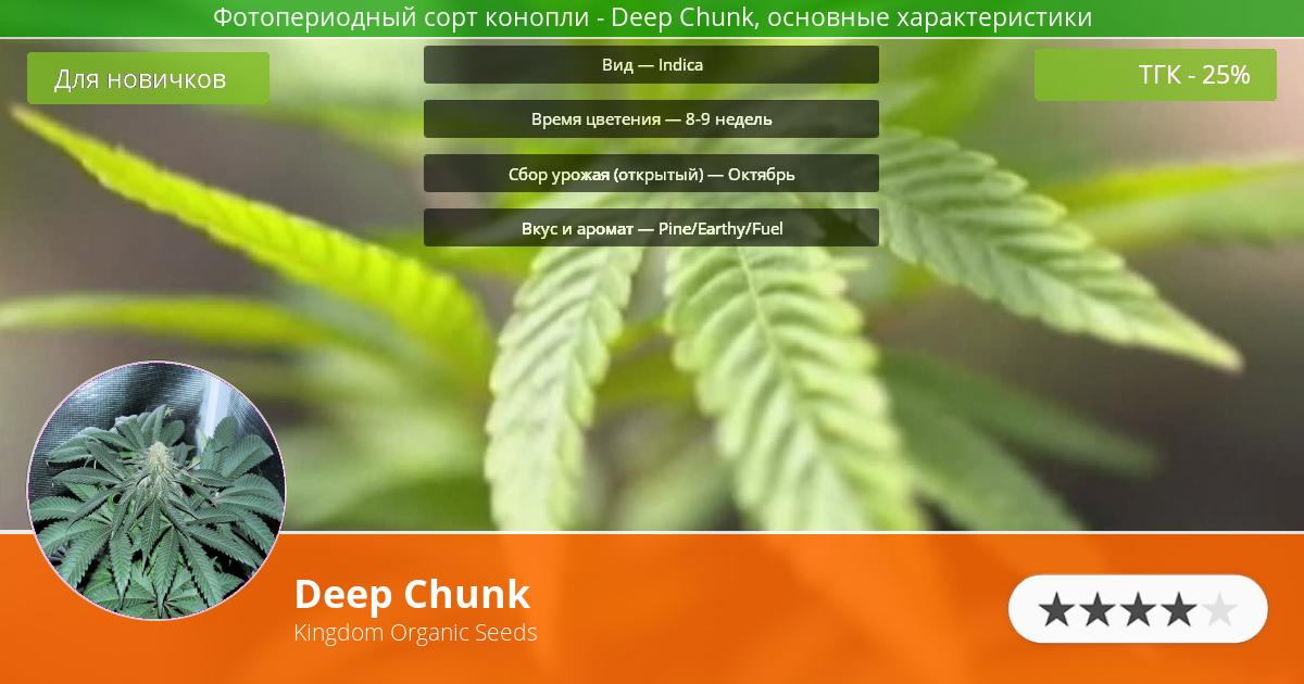 Инфограмма сорта марихуаны Deep Chunk