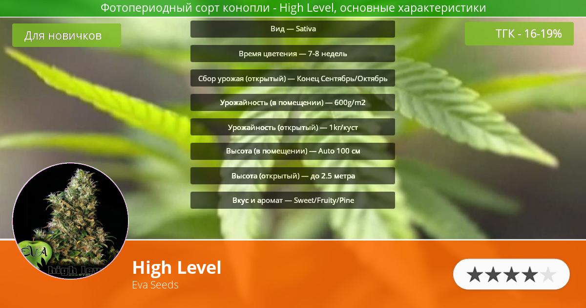Инфограмма сорта марихуаны High Level