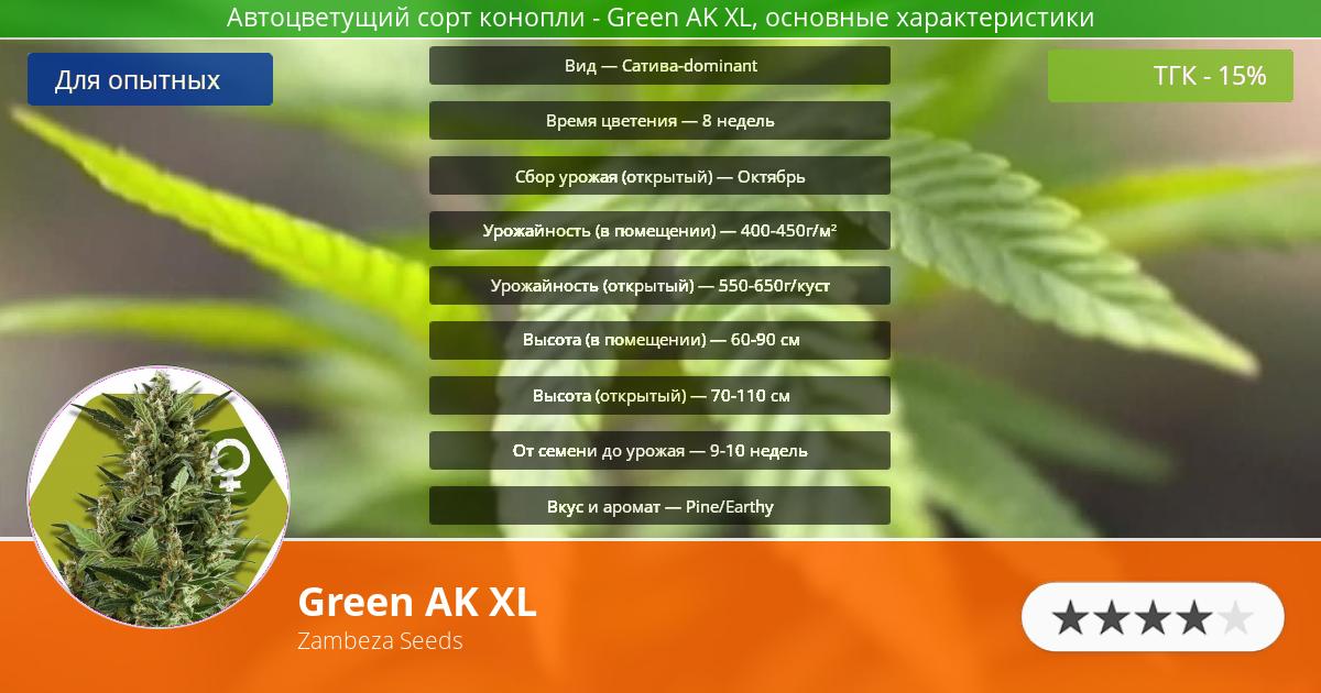 Инфограмма сорта марихуаны Green AK XL