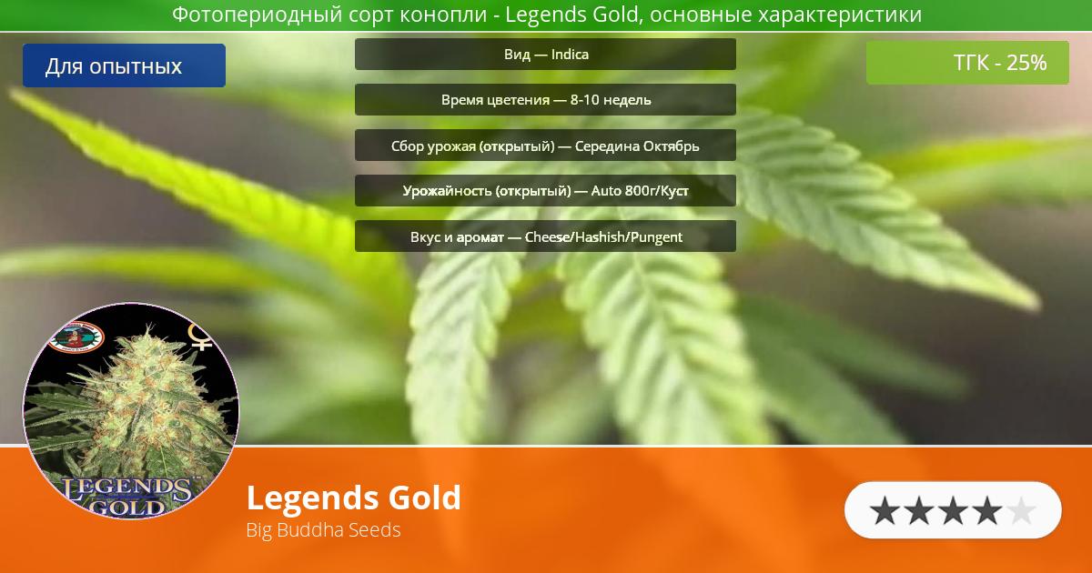 Инфограмма сорта марихуаны Legends Gold