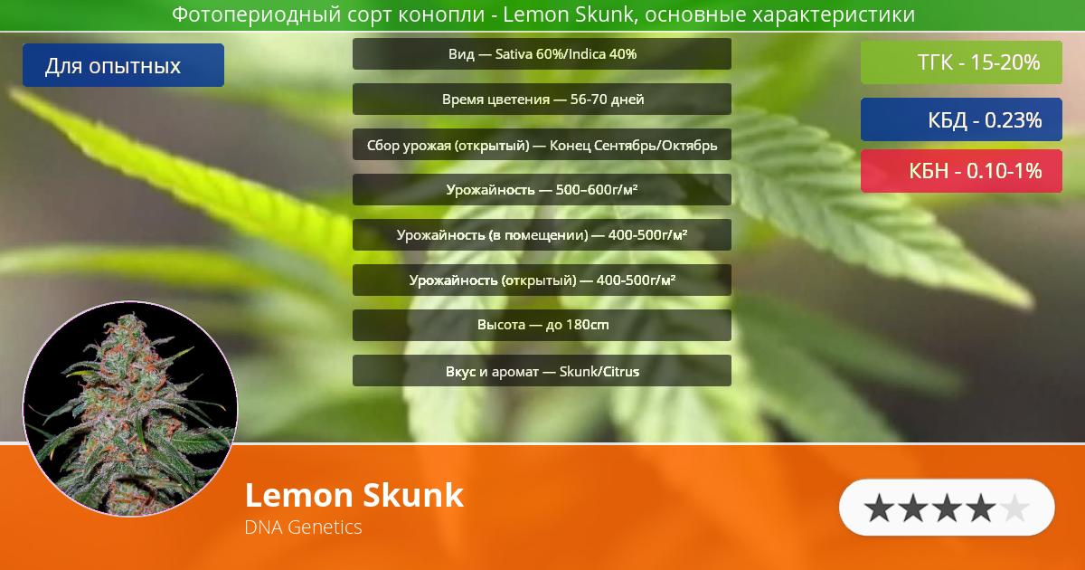 Инфограмма сорта марихуаны Lemon Skunk