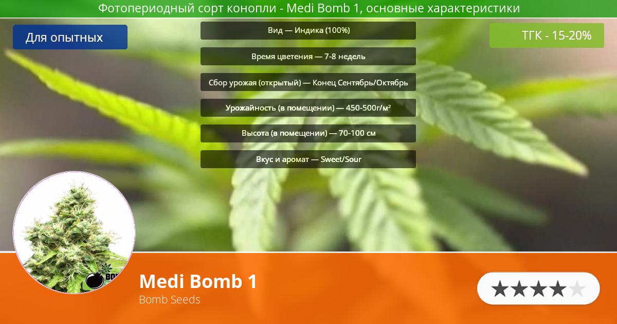 Инфограмма сорта марихуаны Medi Bomb 1