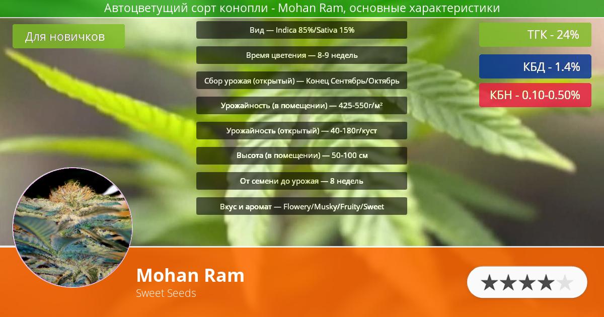 Инфограмма сорта марихуаны Mohan Ram