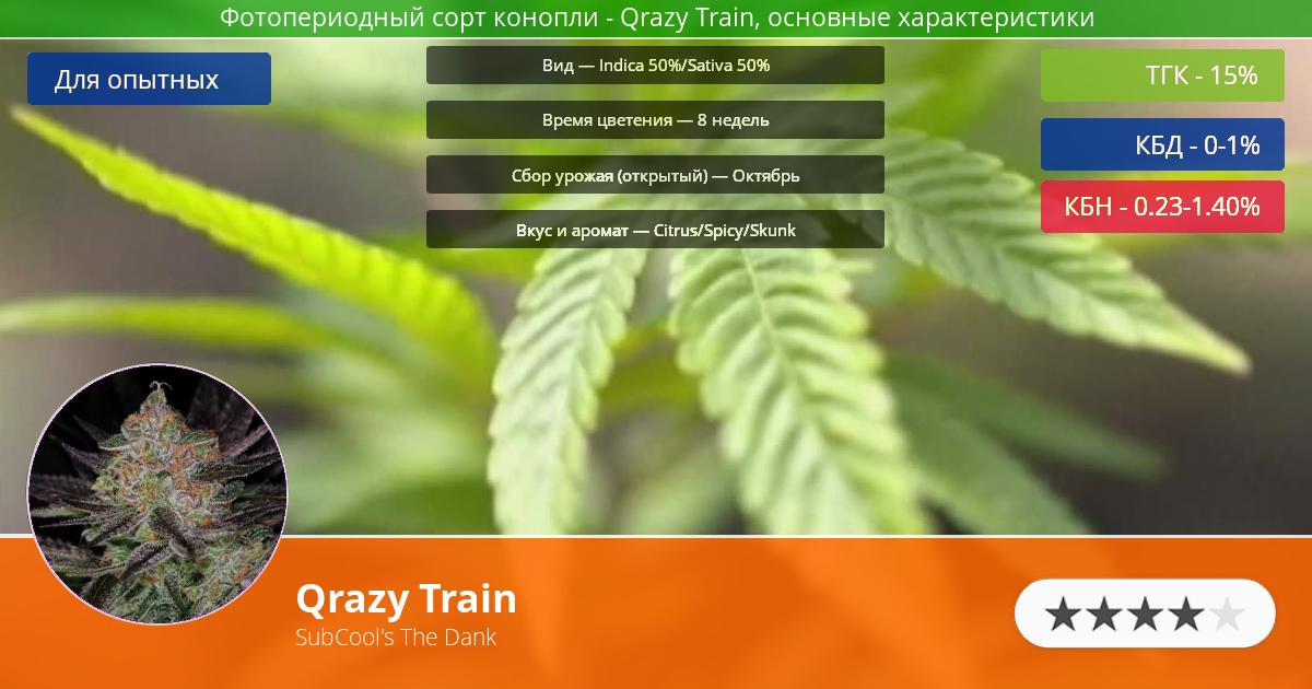 Инфограмма сорта марихуаны Qrazy Train