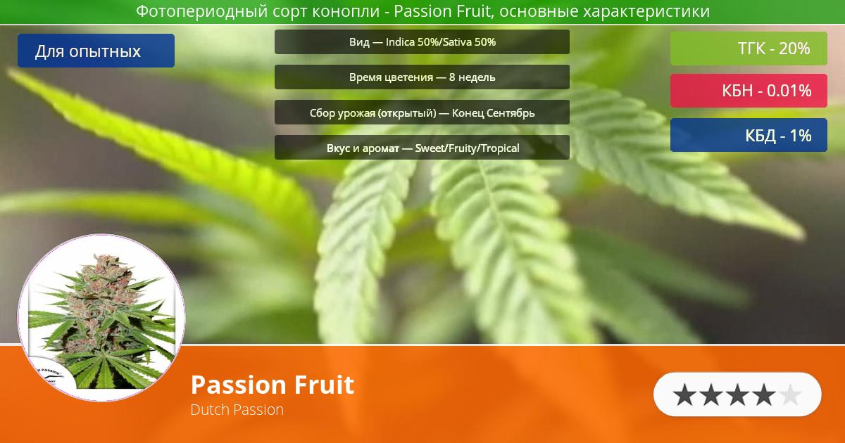Инфограмма сорта марихуаны Passion Fruit