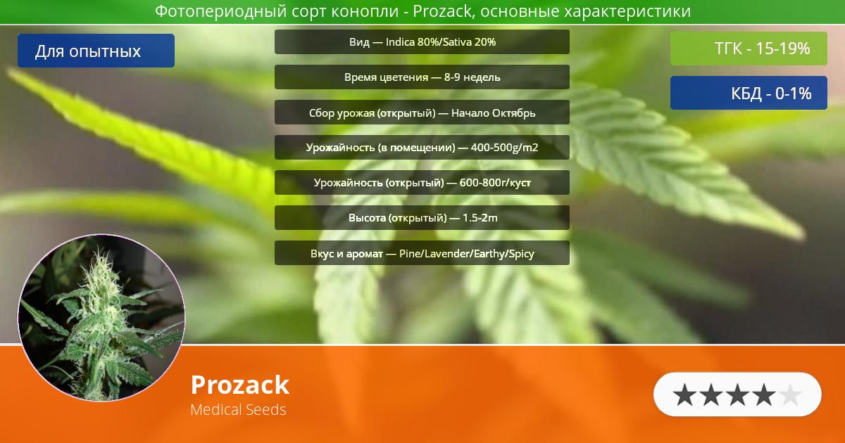 Инфограмма сорта марихуаны Prozack