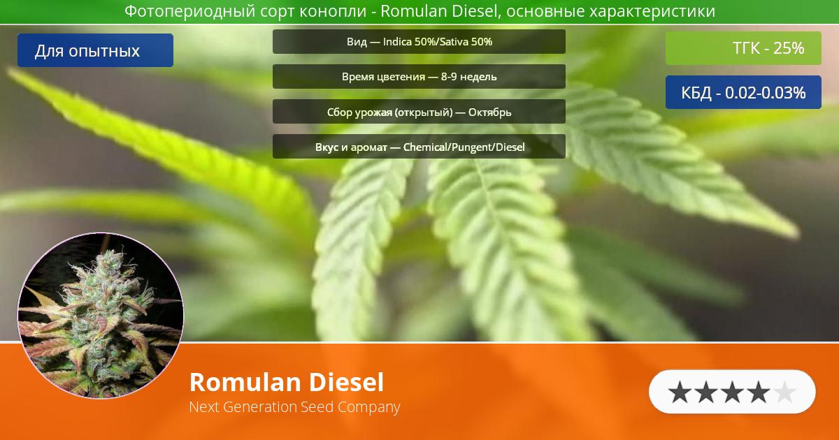 Инфограмма сорта марихуаны Romulan Diesel