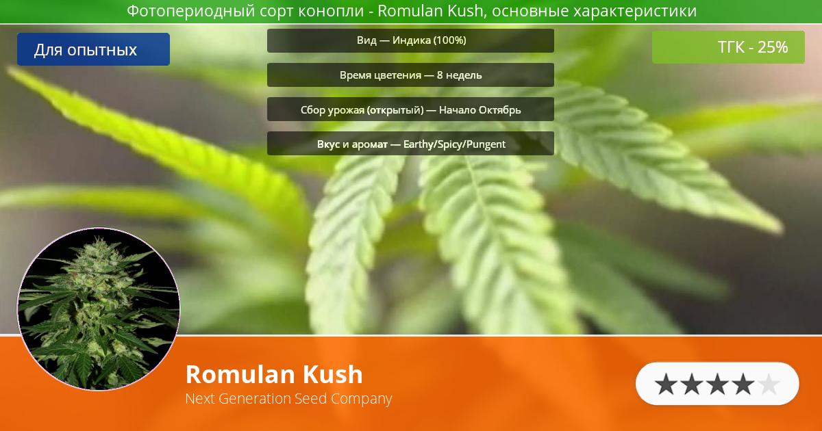 Инфограмма сорта марихуаны Romulan Kush