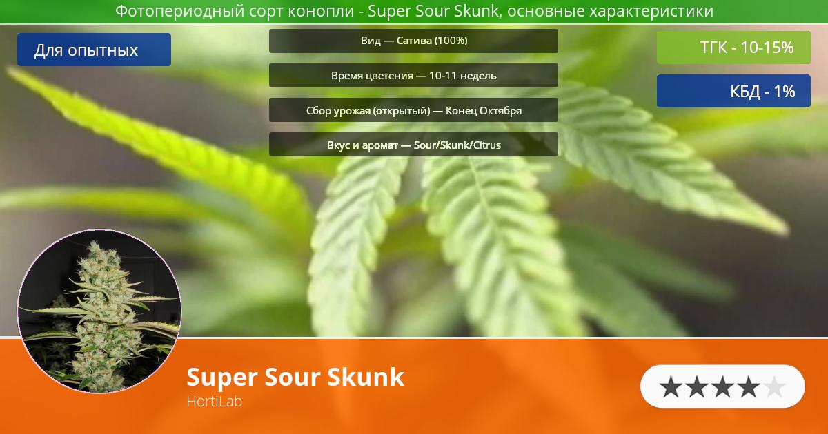 Инфограмма сорта марихуаны Super Sour Skunk
