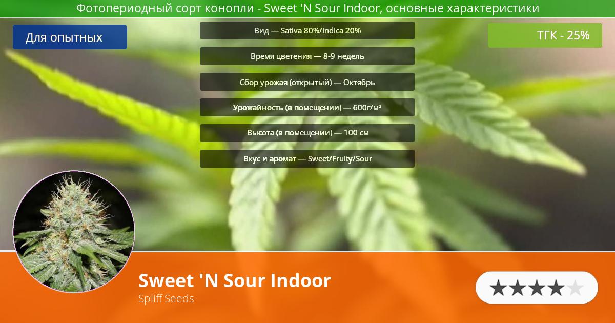 Инфограмма сорта марихуаны Sweet 'N Sour Indoor