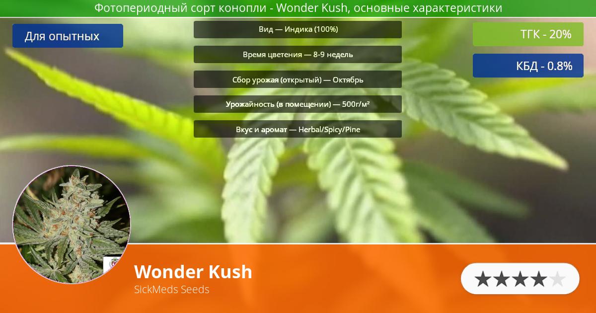 Инфограмма сорта марихуаны Wonder Kush