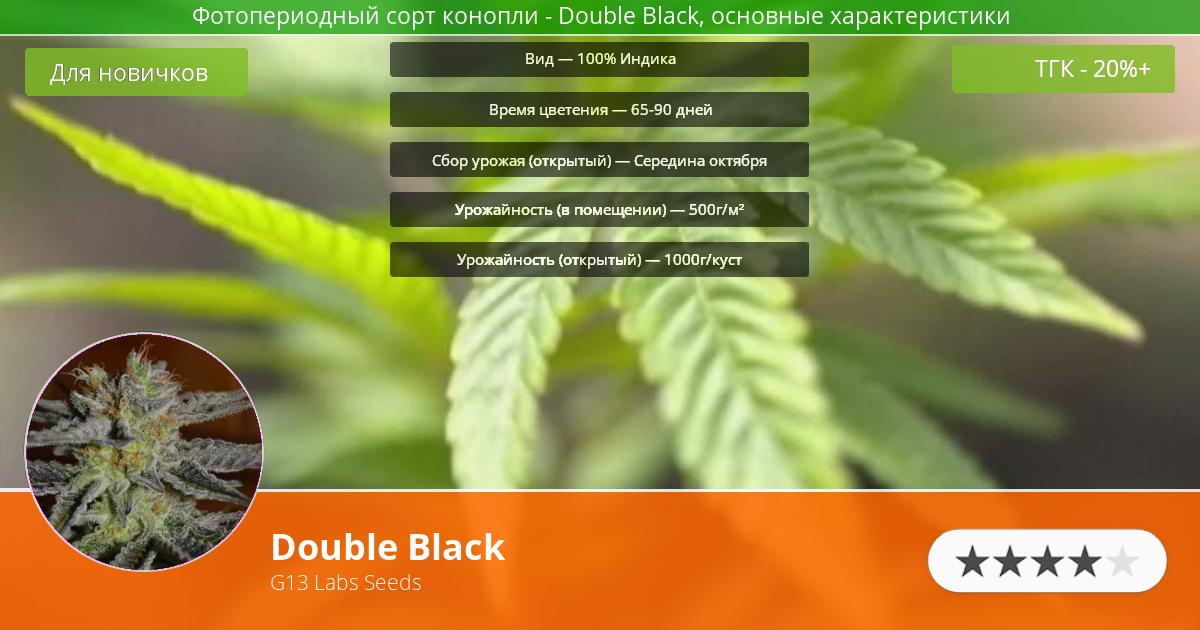 Инфограмма сорта Double Black